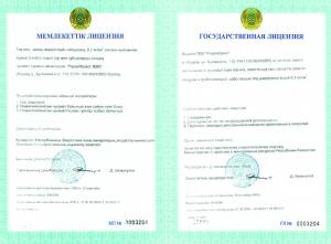 Государственная лицензия, на занятия видом деятельности: эксплуатация горных, химических производств; ремонт сосудов и трубопроводов, работающих под давлением 0,7 кг/ кв.см